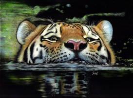 Tiger Swim by shonechacko