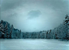 .Winter upon us. by gin-sui