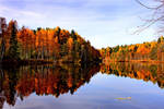 Autumn reflection by gin-sui
