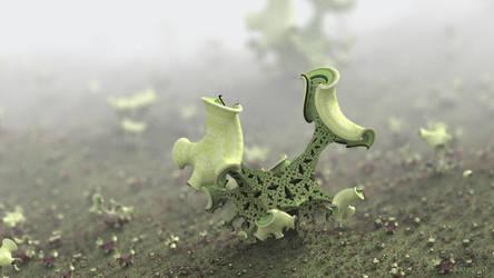 Organica by batjorge