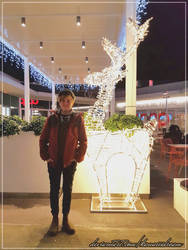 Merry Lights by Kawaiiidream
