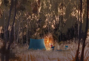 The Autumn camping trip by PascalCampion