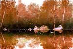 Pond Side by PascalCampion