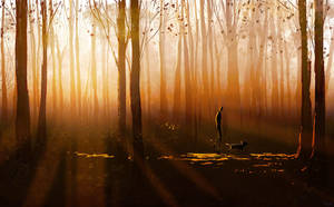 Twilight walk by PascalCampion