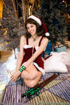 Holiday Selphie by The-Cosplay-Scion