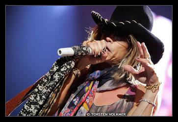 Aerosmith - Steven Tyler by Torsten-Volkmer