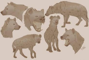 Hyena Study by Lady-Darkstreak