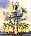 evolution  of tree by yael360