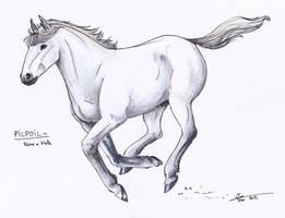Run, pony, run - PC by Ehnala