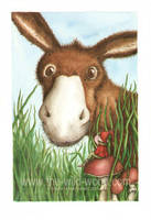 Donkey Finds a Pixie by WildWoodArtsCo