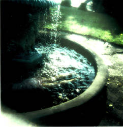 Fountain of Youth by Lyndzie