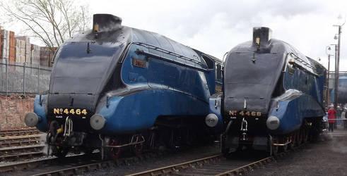 4464 'Bittern' and 4468 'Mallard' by 2509-Silverlink