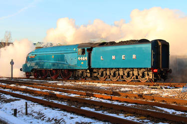 Farewell No.19 by 2509-Silverlink