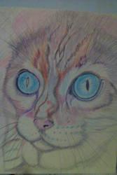 Cat 2 Original by lothairebeaumont