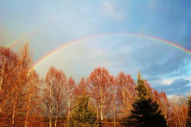 Somewhere Over The Rainbow by Niji-No-Kuroi-Bara