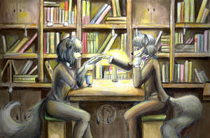 In library by Reiterin2501
