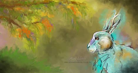 Rabbit by aledobo