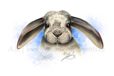 Bunny by aledobo