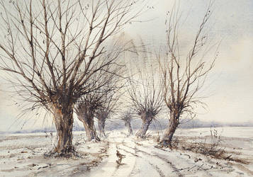 Willows by stefanzhuty