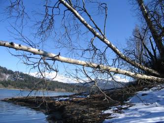 River Inlet by mizmegz