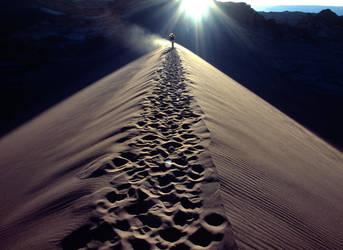 dune by padraig13