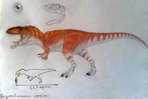 Giganotosaurus carolinii by ZeWqt