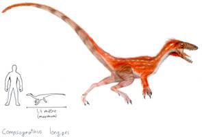 Compsognathus longipes by ZeWqt