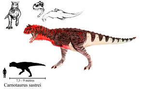 A male Carnotaurus sastrei by ZeWqt