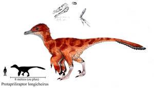 Protapriliraptor longicheirus by ZeWqt