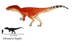 Allosaurus fragilis by ZeWqt