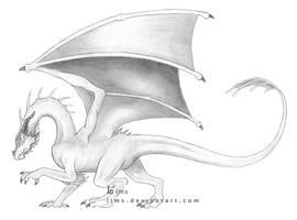 Eternal Dragon by lims