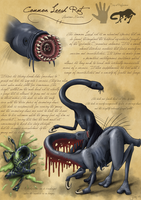 Common Leech Rat by Jish-G