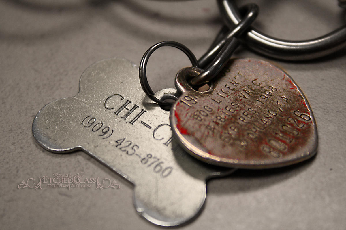 Dog Tags by etchedglass