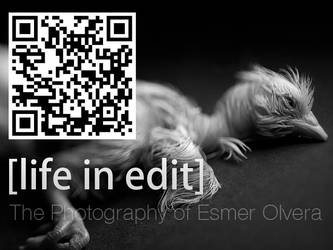 Life in Edit QR Code 02 by lifeinedit