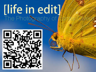 Life in Edit QR Code 03 by lifeinedit