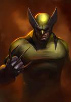 Wolverine by jakeandersonstudio