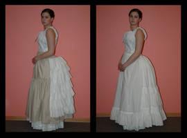 1880's Bustle and Petticoat by immortalphoenix