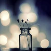 Midnight Magic by IndigoSummerr