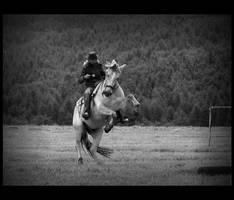 Rodeo xxpx by Pawkeye