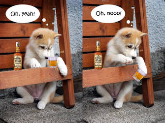 My whisky by Pawkeye