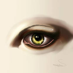 Eye -Digital Art by SegmaKun