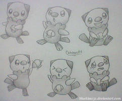 Oshawott by BluuKiss