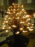 Little Candle Tree by zda369
