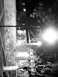 Street Lamp by zda369