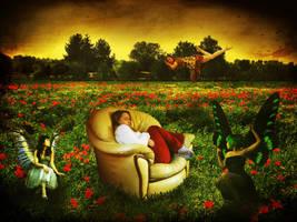 Field of Dreams by KingBradders