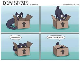 DomestiCats - Invisible by ShinePawArt