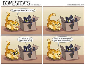 DomestiCats - Box treatment by ShinePawArt