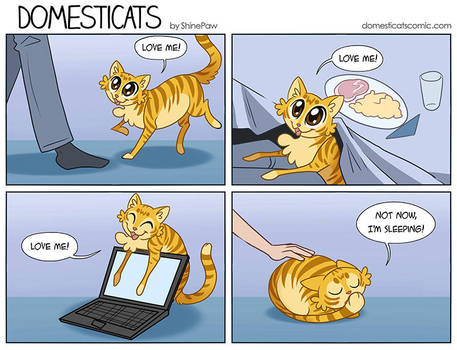 DomestiCats - Catblock by ShinePawArt