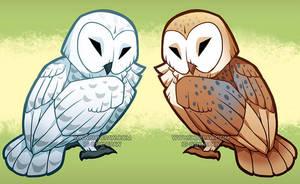 Snowy and barn owl by ShinePawArt
