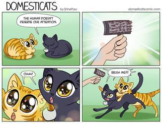 DomestiCats- Brush by ShinePawArt
